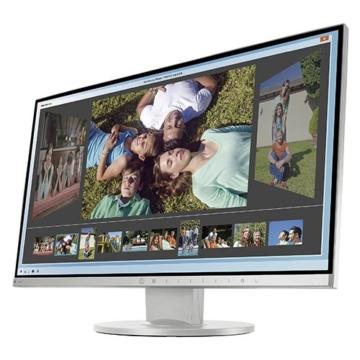 Eizo EV2450-GY 60 cm (23,8 Zoll) Monitor (DisplayPort, DVI-D, HDMI, D-Sub, USB 3.0, 5ms Reaktionszeit) grau - 5