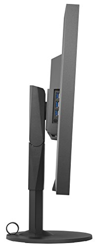 Eizo EV3237-BK 80 cm (31,5 Zoll) Monitor (4K UHD, DVI, HDMI, 5ms Reaktionszeit) schwarz - 5